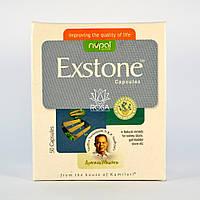 Экстон (Exstone Capsules, Nupal Remedies) растворяет камни в почках и выводит песок