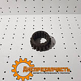 Колесо зубчатое заднего хода ЮМЗ, 40-1701051, Z=18, фото 2