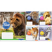 """Тетрадь 12 листов/линия 760721 """"World of the Wild"""", 25 шт. в упаковке (Y)"""