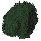Пигмент зеленый темный, 1кг, фото 2