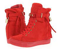 Женские сникерсы Shorts RED