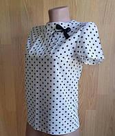 Подростковая блуза для девочки Поля(принт)