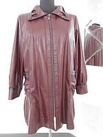 Куртка-плащ женская демисезонная бордо большого размера