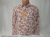 Мужская рубашка с длинным рукавом Piazza Italia