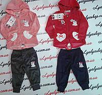 Спортивный костюм велюр для девочки р-р,86-116 см, детская одежда из Венгрии оптом