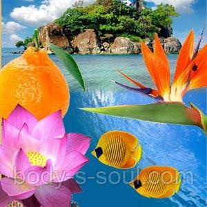 Косметические отдушки для мыла, свечей, косметики ручной работы Кораловый риф