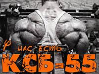 Сывороточный протеин ксб 55 цена