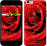 "Чехол на iPhone 6 Красная роза ""529c-45-6129"""