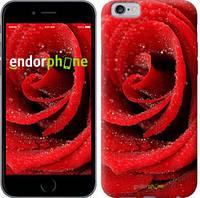 "Чехол на iPhone 6s Красная роза ""529c-90-6129"""