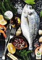 Эксклюзив! Серия уроков «Готовим вместе вкуснейшие блюда из рыбы», 4 урока