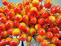 Калина лакированная декоративная оранжевая с красным, соцветие из 50 ягод, диаметр ягоды 8 мм