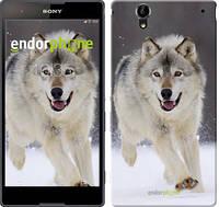 "Чехол на Sony Xperia T2 Ultra Dual D5322 Бегущий волк ""826c-92"""