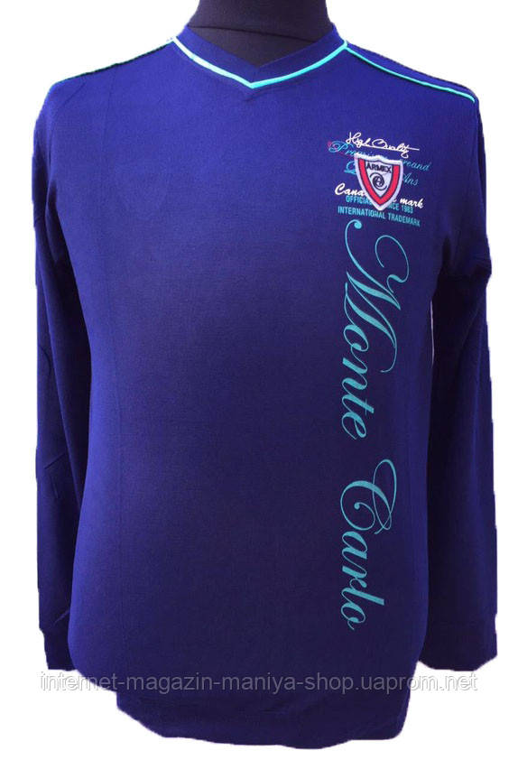 Пуловер мужской текст (деми)