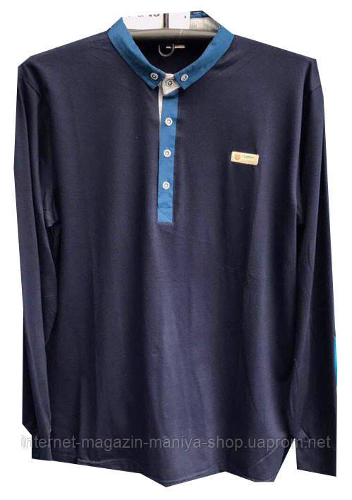 Пуловер мужской с воротником пуговицы поло (деми)