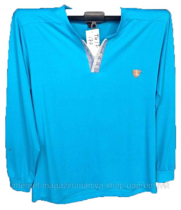 Пуловер мужской пуговицы (деми)
