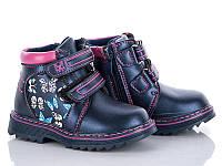 Демисезонная обувь Ботинки от фирмы MLV для девочек оптом(22-27)