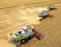 Услуги по уборке урожая комплексные
