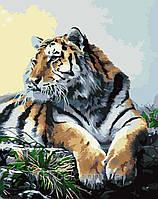"Раскраски на холсте ""Тигр"" наборы для рисования"