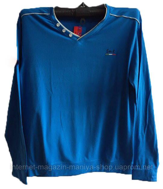 Пуловер мужской пуговички (деми)