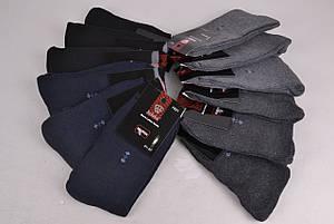 Носки мужские махра (F621-2) | 12 пар, фото 2