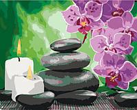 "Картина раскраска по номерам ""Оазис спокойствия"" набор для рисования по схеме"