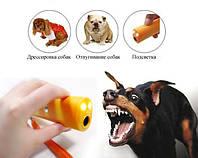 Ультразвуковой отпугиватель собак DRIVE DOG AD 100 Есть режим тренера FN
