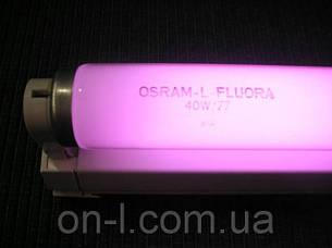 Лампа для растений Osram FLUORA 15W T8, фото 2