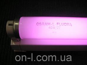 Люминесцентные лампы Osram FLUORA 18W T8, фото 2