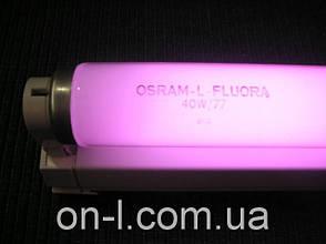 Люминесцентные лампы Osram FLUORA 36W T8, фото 2
