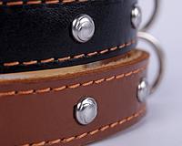 Ошейник для собак COLLAR с украшениями 14мм/35см 00046, коричневый