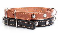Ошейник для собак COLLAR одинарный с украшением 12мм/ 24-32см 00231, чёрный