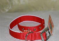 Ошейник COLLAR Dog Extremе двойной нейлоновый со светоотражающей вставкой 25мм/38-48см, 67043, красный