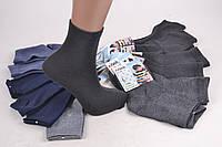 Детские медицинские носки на мальчика (Арт. ALC48/mix) | 36 пар