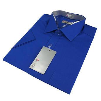 Мужская классическая рубашка De Luxe 201K васильковая (короткий рукав)
