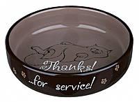Миска Trixie Ceramic Bowl for Short-Nosed Breeds для персов неглубокая, керамика, 0.3 л, фото 1