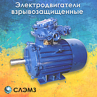 Электродвигатель взрывозащищенный 45 кВт 1000 об/мин АИММ 250 S6, 2ВР 3ВР 1ВАО ВАО ВАО2 ВА АИУ ВА ВРП взрывник