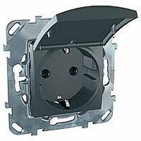 Розетка с заземлением и крышкой графит Schneider Electric - Unica (Шнейдер Электрик Уника mgu3.037.12TA), фото 1