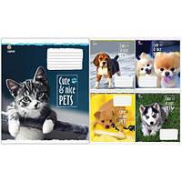Тетрадь в клетку 12 листов760479«Cute&Nice» Зошит Украины