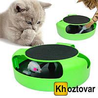 Игра для котов с точилкой для когтей Catch The Mouse