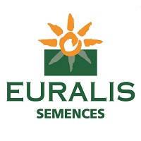 Семена подсолнечника ЕС Амис (EURALIS semences)
