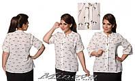 Стильная женская блуза большого размера  ( 52,54,56 )