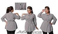 Стильная женская удлиненная рубашка в полоску ( 50 - 62 )