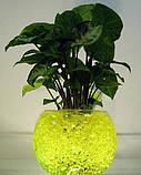 Гидрогель шарики желтый уп 10 000 шт, фото 2