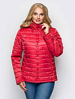 Куртка женская большого размера В5060 (5цв) демисезон,  демісезонна куртка жіноча великого розміру
