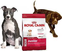 Royal Canin первый прикорм