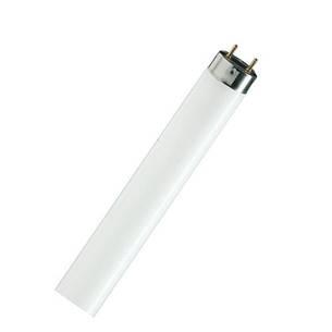 Люминесцентные лампы PHILIPS TL-D 36W G13, фото 2