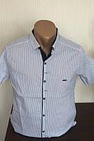 Мужская рубашка с коротким рукавом с узором Paul Smith