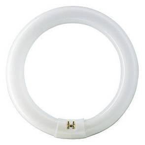 Люминесцентные лампы PHILIPS TL-E 40W круговая, фото 2