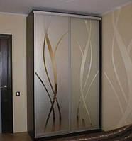 Шкаф-купе Влаби 1000х600х2100 - 2 фасада