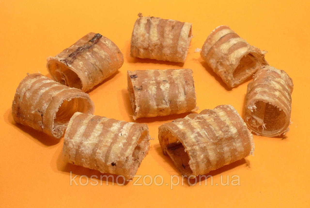 Сушеная трахея говяжья (лакомство для собак) 1 кг